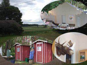 Haikarapolska Hausjärven Miinan montussa 2.8.2015.